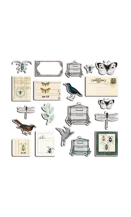 Conjunto 20 chipboards Cabinet de curiosités