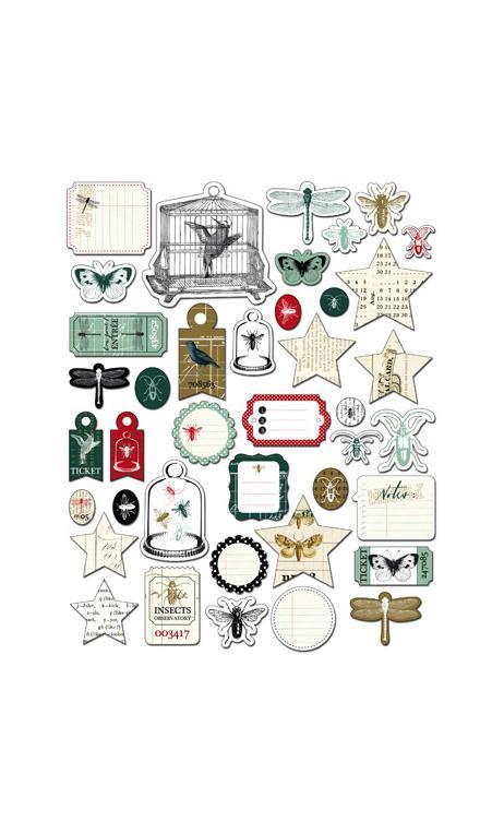 Conjunto 40 formas recortadas Cabinet de curiosités