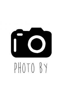 Sello de caucho con empuñadura de madera Camara fotos
