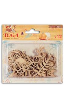 12 Formas madera semillas de calabaza