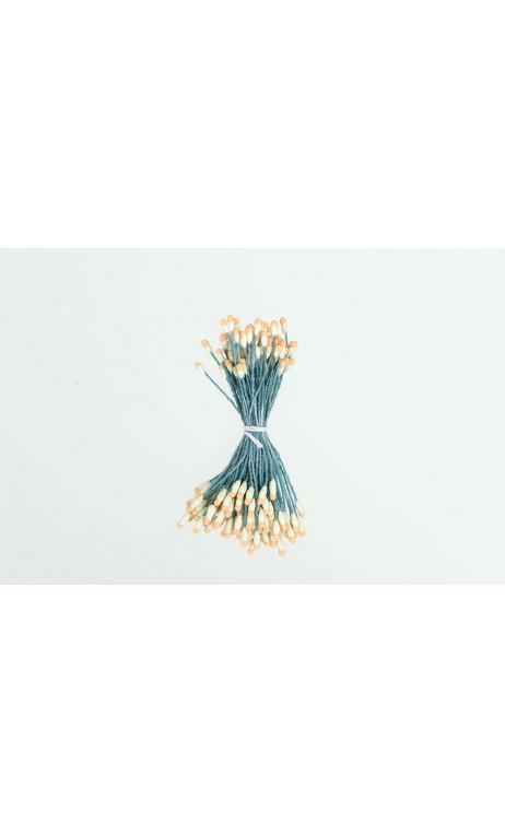 Semillas de flor, verde/naranja 100 pcs, 6 cm