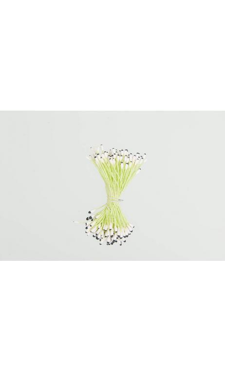 Semillas de flor, verde/negro 100 pcs, 6 cm