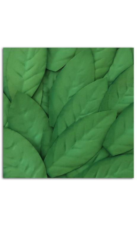 Surtido 25 hojas Verde oscuro